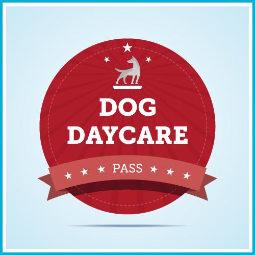 Unleashed Dog Daycare & Wellness Center | Tacoma, WA | Dog Daycare Package